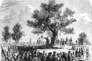 A liberty tree with effigies.