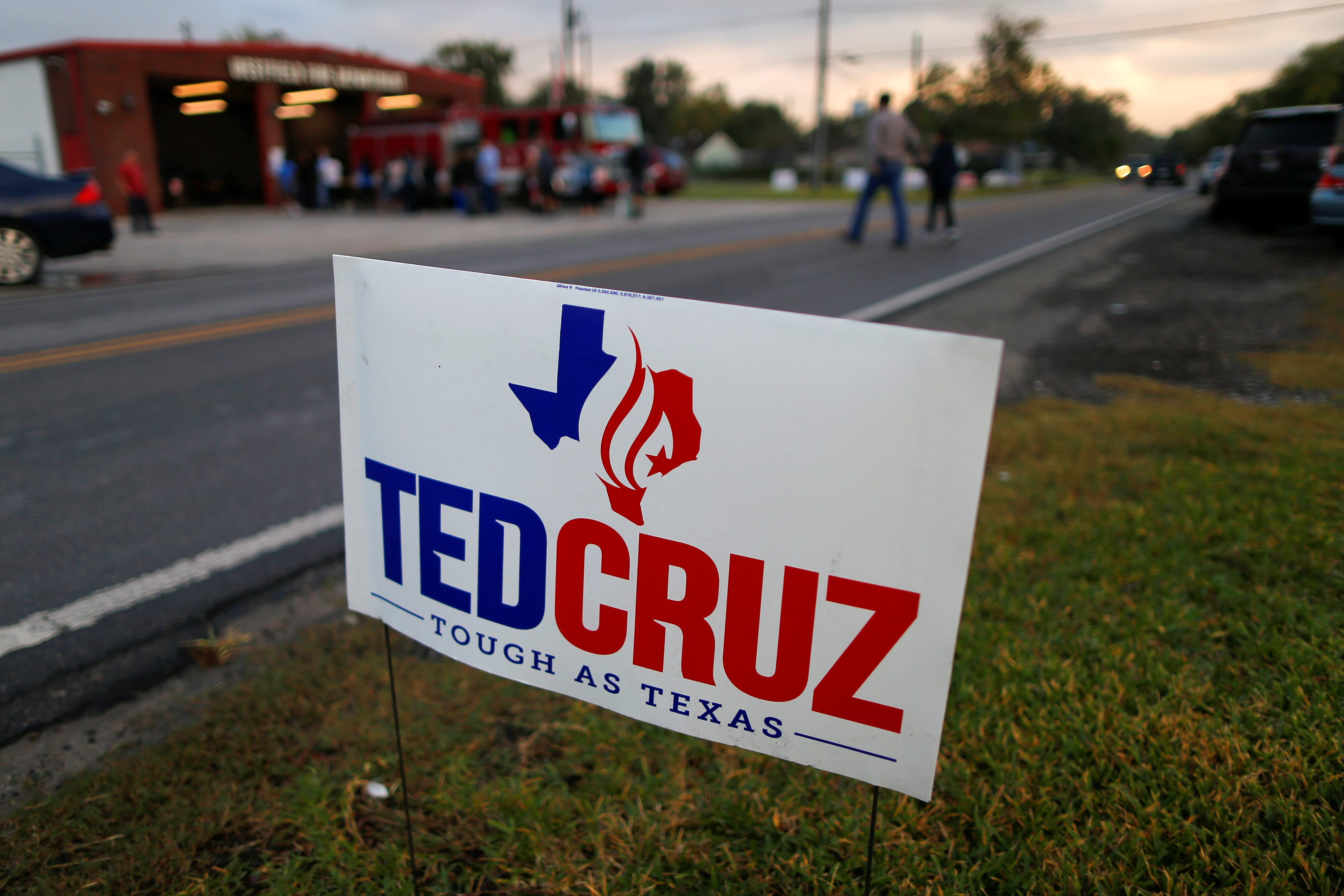 Ted Cruz campaign sign